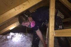 insulation-upgrades-in-attic-brantford-reno